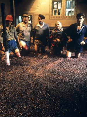 Die traditionelle Maischebehandlung für Portwein – das Stampfen