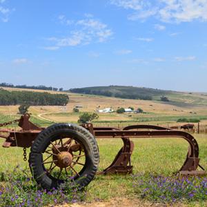 Der ländliche Charme von Swartland