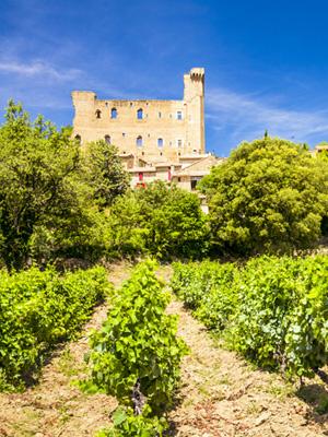Aus der Provence stammen einige der begehrtesten Roséweine (Bild: Châteauneuf-du-Pape)