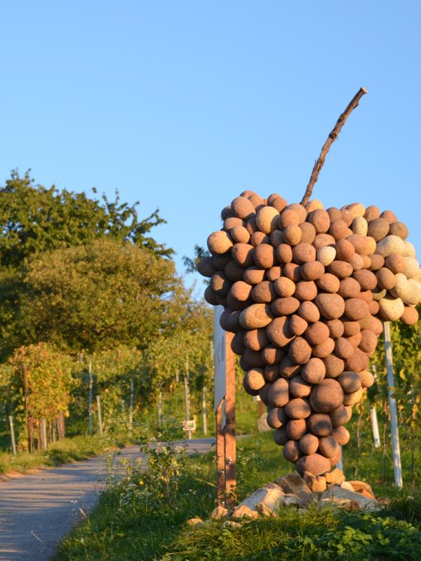 """Am Erlebnispfad """"Wein+Stein"""" an der Bergstrasse ist eine Skulptur des Künstlers Adolf Mayer dem Rotem Riesling gewidmet."""