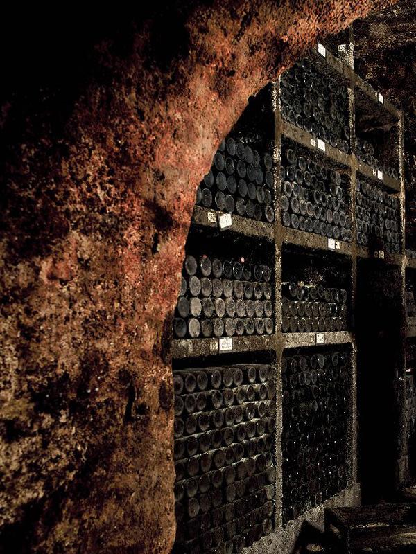 Die Gewölbekeller des Weinguts kann man leicht als Schatzkammer bezeichnen