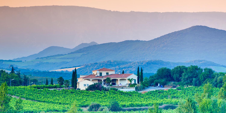 Provence in Pink – Die lachsfarbene Erfrischung