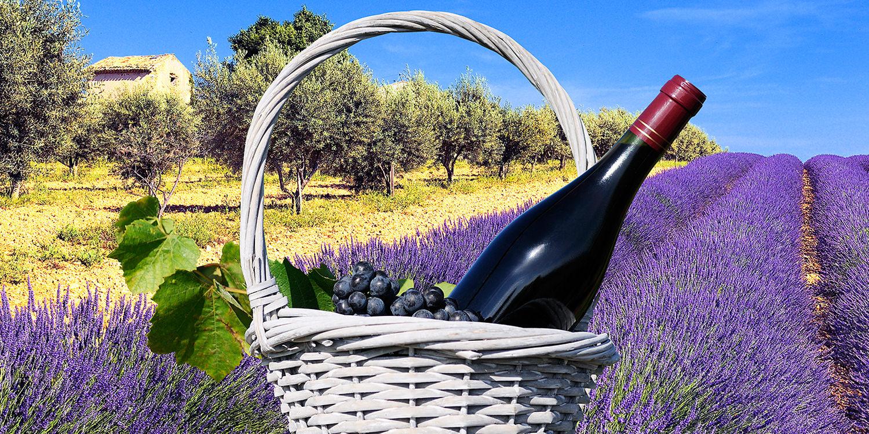 Provence die Weinregion in Frankreich- französische ...