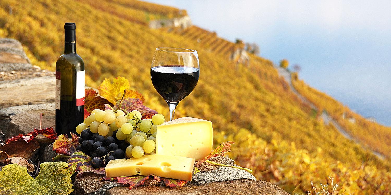 Kleiner Ratgeber – Wein und Käse gut kombiniert