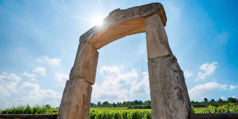 Berühmte Weinlagen – Le Montrachet (Bourgogne)