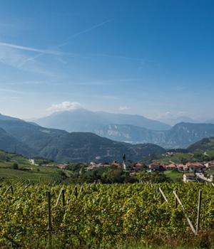 Das Trentino bietet eine facettenreiche Vielfalt was Natur und Wein angeht