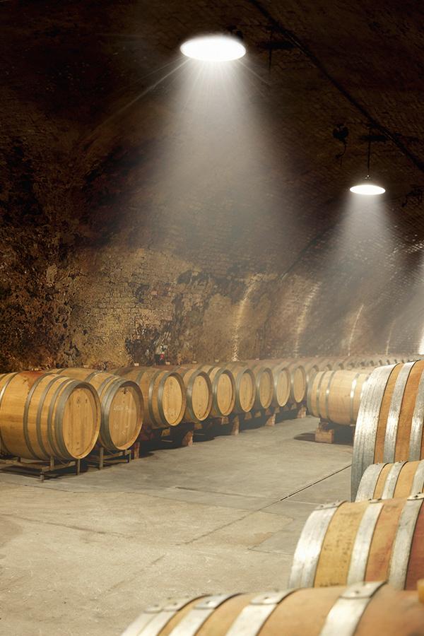 Der Naturkeller des Weinguts Jurtschitsch