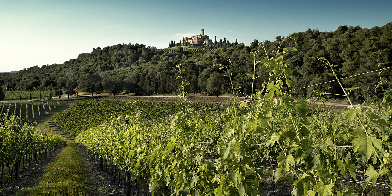 Castello Banfi – Nicht nur ein Brunello-Stargut