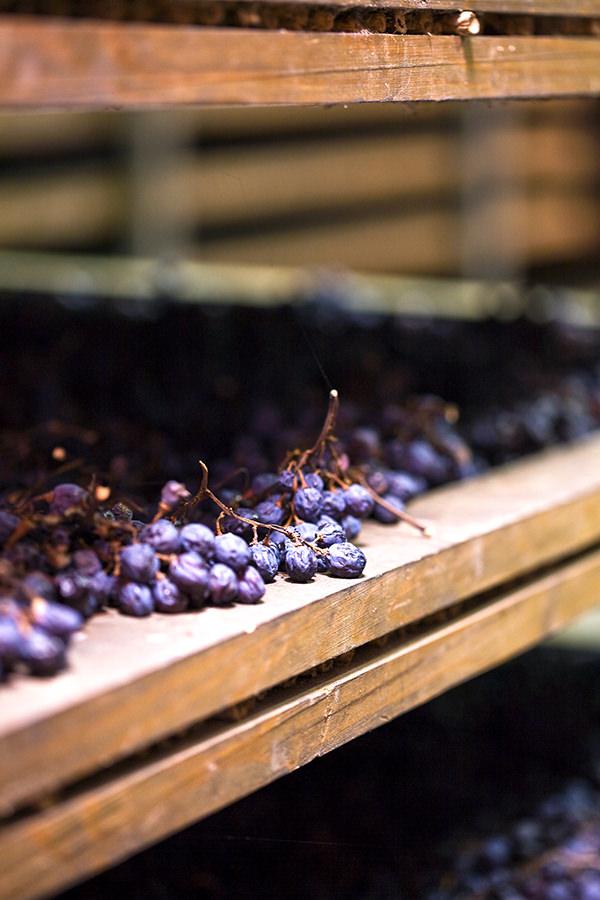 Sonnengetrocknete Corvina für Amarone