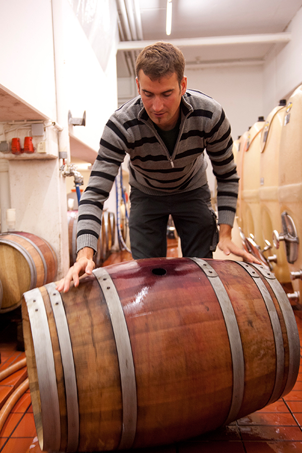 Ob gehaltvolle Rotweine oder Rieslinge: Julian Singer gelingen Topqualitäten