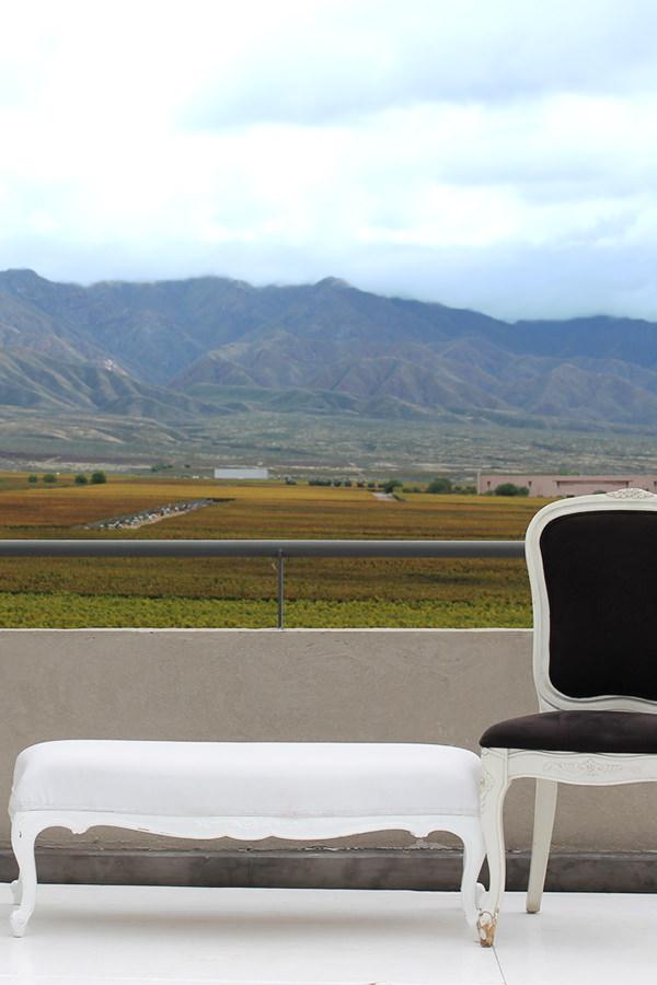 Ausblick in der Weinregion Mendoza