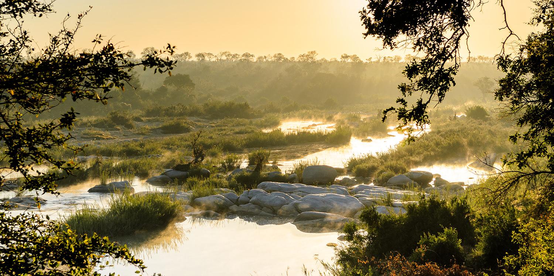 Diese Weinregionen Südafrikas sollten Sie kennen