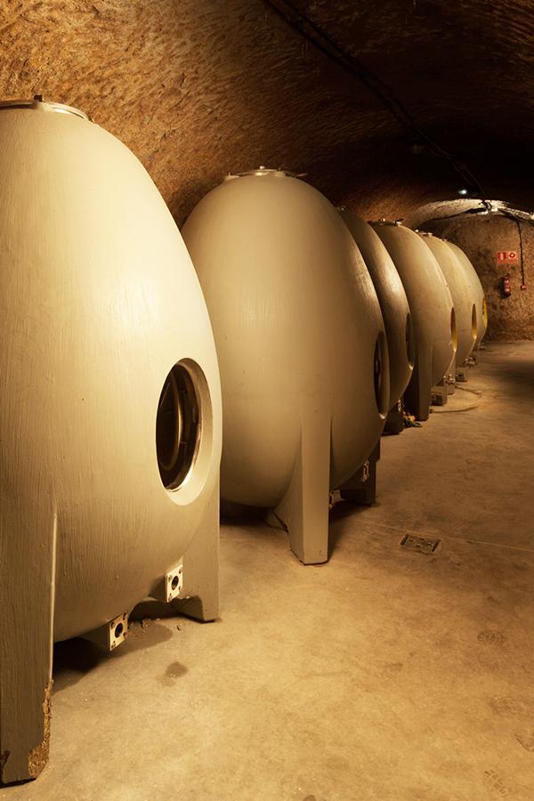In den Kellern des Weinguts Campo Eliseo