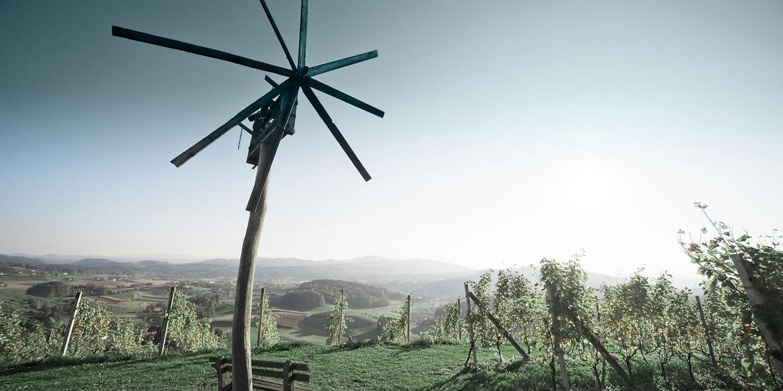 Die Steiermark – Grosses Terroir für frische Weine