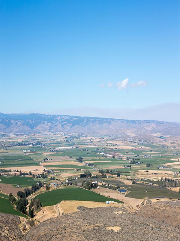 Walla Walla Valley in Washington State
