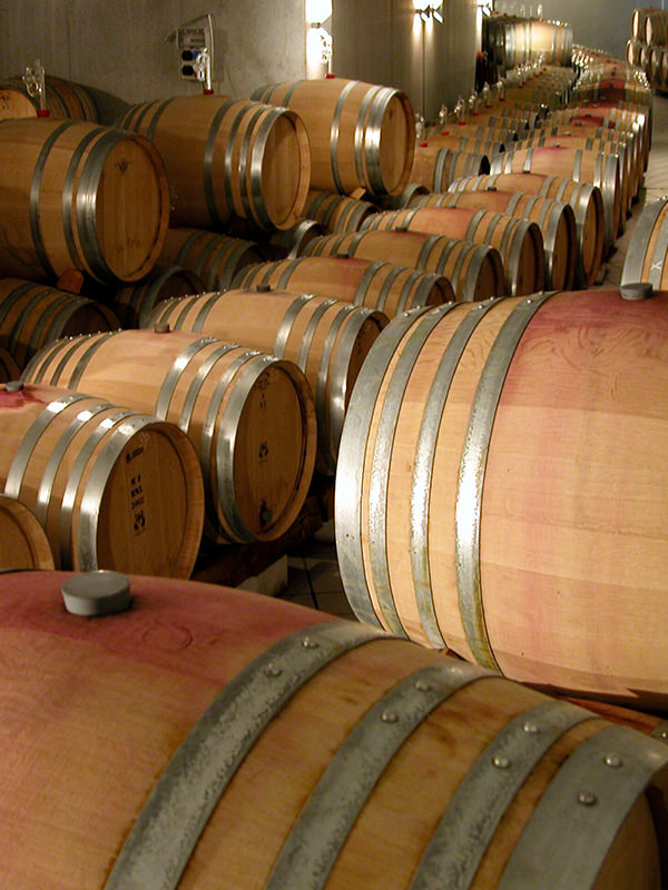 Der Weinkeller des Weinguts Donatsch