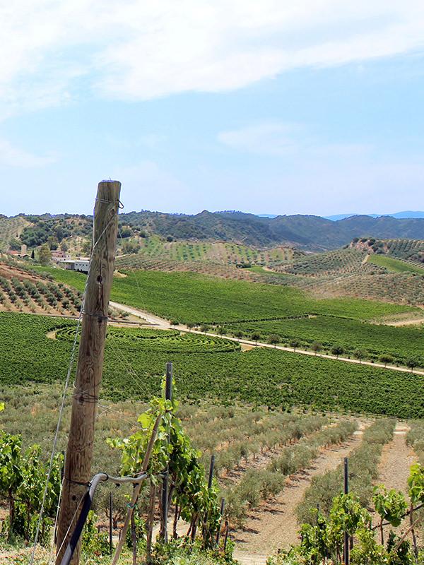 Landschaft von Kalabrien