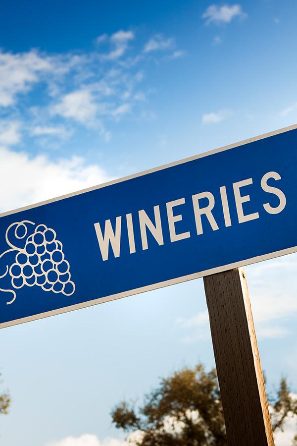 Besuchen Sie verschiedene Weingüter